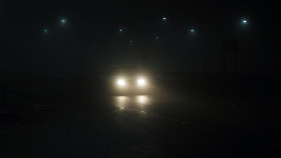 Неизвестный водитель насмерть сбил женщину в Воронежской области
