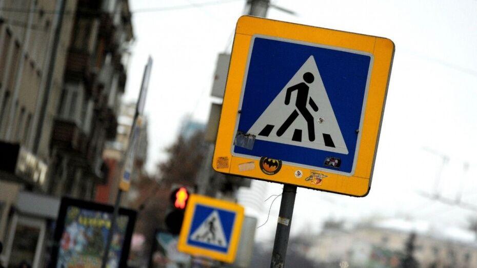 Пешеходные переходы у школ и садиков Воронежской области приведут в порядок к 2018 году