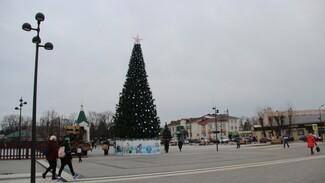 В Новой Усмани установили 15-метровую искусственную елку