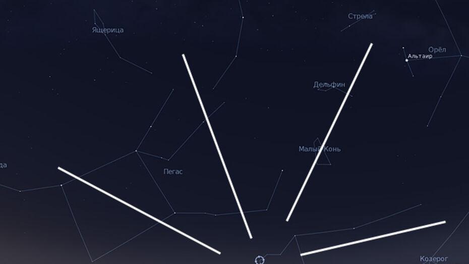 Воронежцы смогут увидеть звездопад эта-Аквариды утром 6 мая