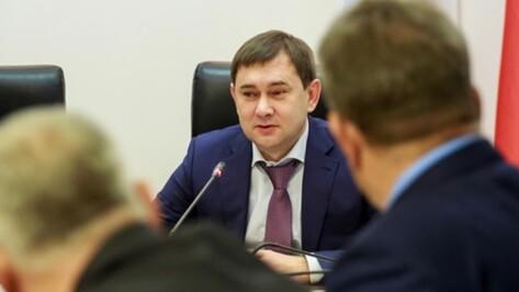 Депутатский корпус Воронежской облдумы поддержит семьи с детьми