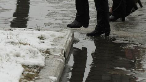 Плюсовая температура и снег с дождем вернутся в Воронеж в выходные