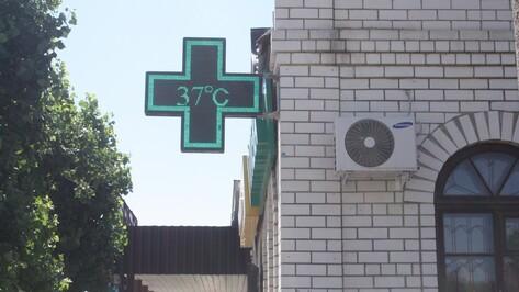 В Богучаре установилась аномальная жара