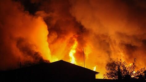 Число погибших на пожарах в Воронежской области снизилось на 27% за 5 лет