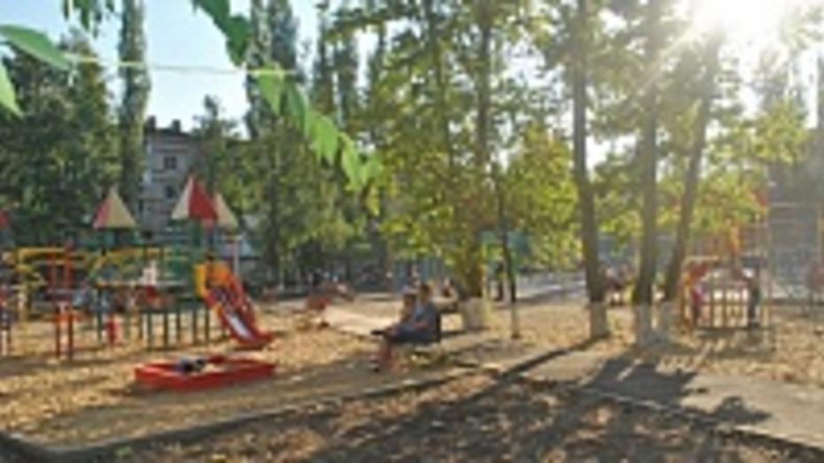 В Лисках на месте пустыря возвели спортивно-игровой комплекс