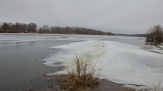 Тело 26-летнего мужчины нашли в реке под Воронежем