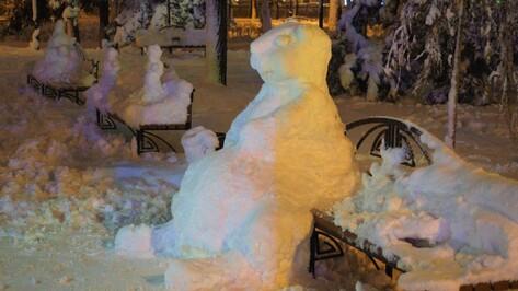 Воронеж получит новую порцию мокрого снега в воскресенье