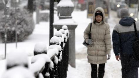 Мэр поручил активизировать вывоз снега с узких дорог в центре Воронежа и уборку тротуаров
