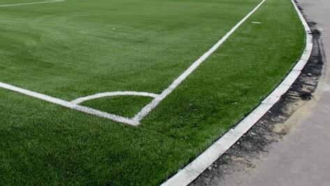 Что войдет в план работ на воронежских стадионах к ЧМ-2018?