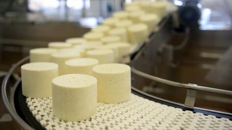 Минсельхоз предложил Воронежскую область для производства итальянских продуктов