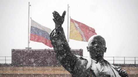Приспущенные флаги и погасшая елка. Как Воронежская область встретила день траура