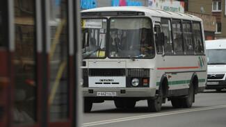В Воронеже маршрутка сбила перебегавшего дорогу мужчину