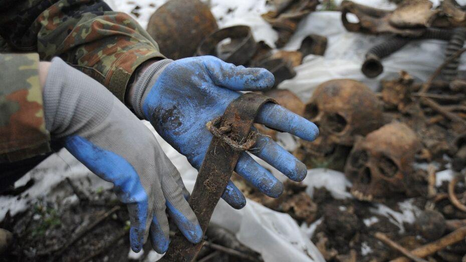 Поисковики обнаружили в Воронежской области более 200 погибших узников немецких лагерей