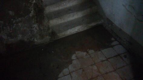Жильцы дома на улице Моисеева в Воронеже сообщили о потопе после дождя