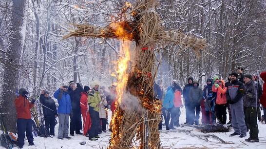 Рядом с воронежским Дивногорьем хотят сжечь 10 скульптур