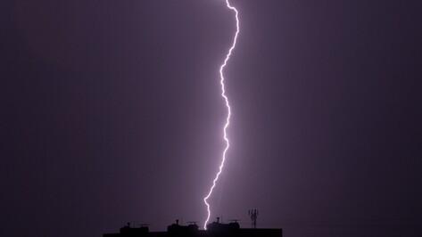 Спасатели предупредили о грозе с градом и сильном ветре в Воронежской области