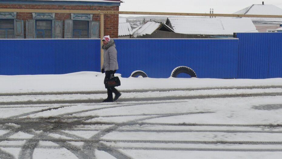 В Верхнемамонском районе сильный ветер сменился снегопадом