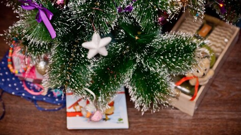 Воронежский «Бутик добра» соберет подарки для детей с проблемами речи