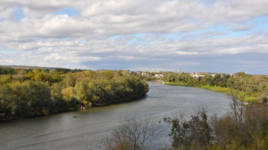 Перед укреплением берегов реки Дон в Воронежской области проведут мониторинг за 500 тыс