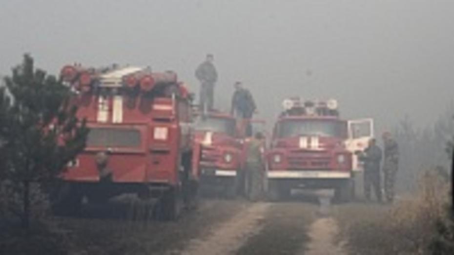 В Новохоперском районе в третий раз за сентябрь загорелся лес