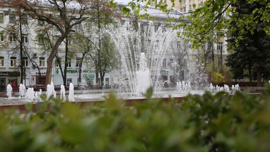 В Воронеже стартовал сезон фонтанов