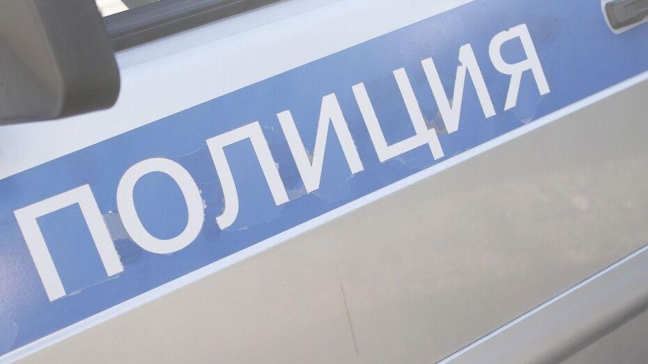 Полиция возбудила 2 уголовных дела после поджогов машин в Воронеже