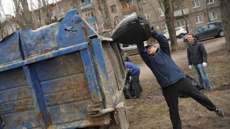 В Воронежской области в месячнике благоустройства поучаствовали 308 тыс человек