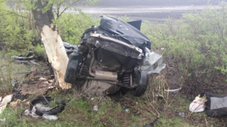В Воронежской области Chevrole столкнулся с деревом: погибли двое
