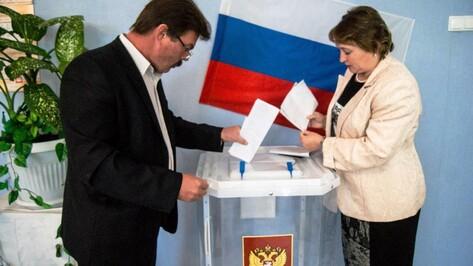 В Аннинском районе выбрали депутатов и глав поселений