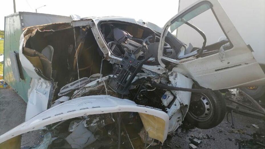 Волгоградец чудом выжил в ДТП с уничтоженной «Газелью» в Воронежской области