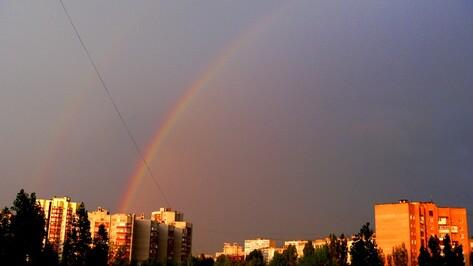 Предстоящая рабочая неделя в Воронеже будет прохладной
