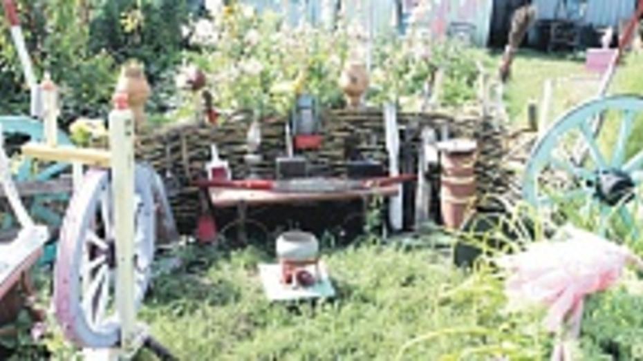 Бобровская пенсионерка создала музей старинных вещей под открытым небом