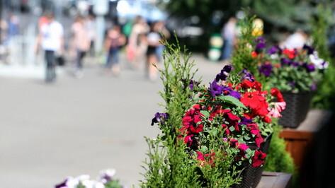 Власти Воронежской области реализовали 135 проектов по поддержке местных инициатив