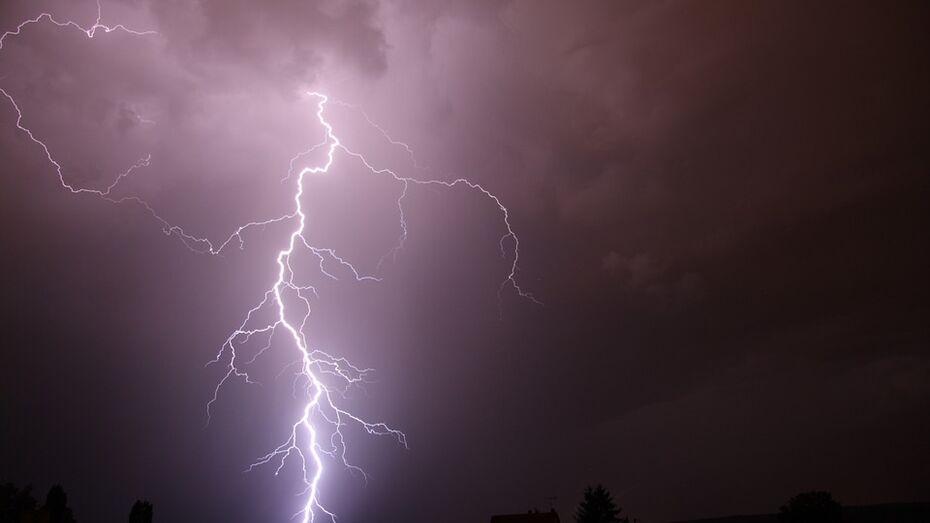 Воронежские спасатели предупредили о грозе и граде в ночь на 24 августа