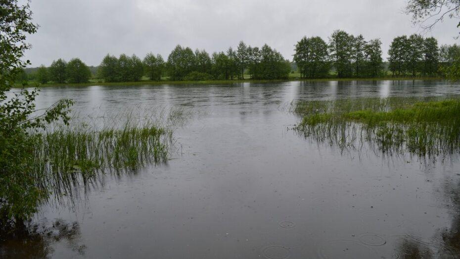 Спасатели достали тела 4 человек из водоемов Воронежской области за день