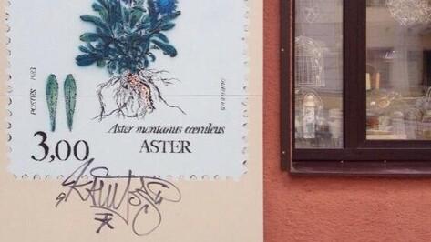 Граффити со стихами Кольцова в Воронеже испортил неизвестный теггер