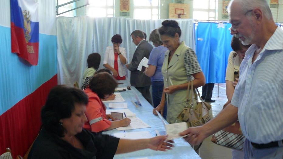 В Каменском районе на выборах губернатора проголосовали 75% избирателей