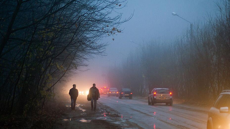 Туман и гололедица увеличивают аварийность на дорогах Воронежской области