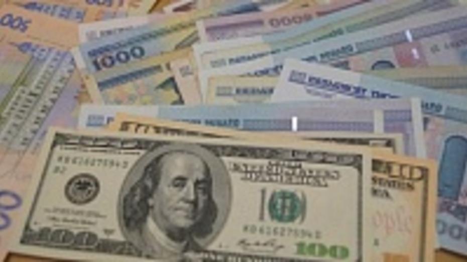 Воронежские депутаты хотят запретить главам городских поселений иметь счета в иностранных банках
