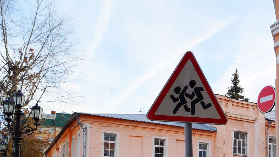 В Воронежской области полицейские поймали 37 пешеходов, нарушивших правила дорожного движения