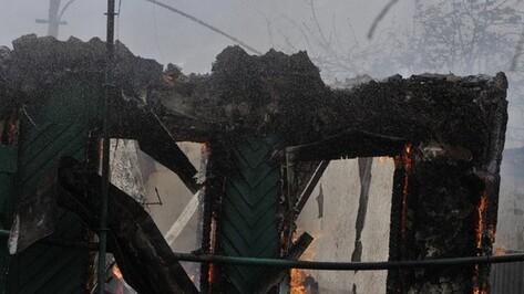 В Воронежской области при пожаре погиб пожилой хозяин дома