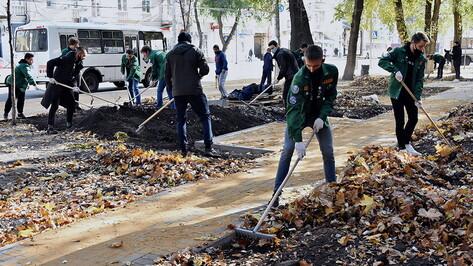 Благоустройство Сквера студенческих отрядов в Воронеже обойдется в 10 млн рублей