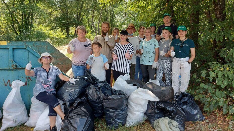 Павловчане собрали более 120 кг мусора на берегу Дона