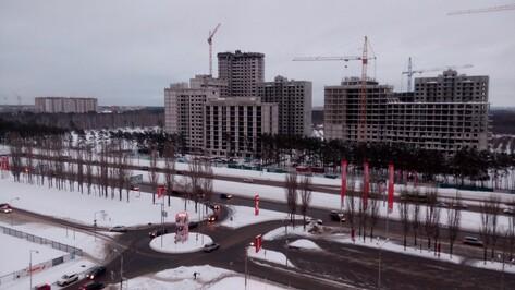 Воронежец пожаловался на вырубку сосен у строящегося ЖК «Московский квартал»