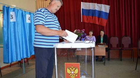 В Павловском районе выберут депутатов облдумы
