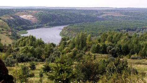 Проект губернатора по развитию туризма в Воронежской области высоко оценили в президентской Академии