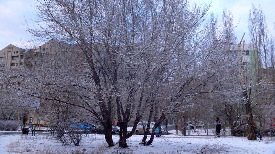 Тепло в Воронежскую область придет в четверг