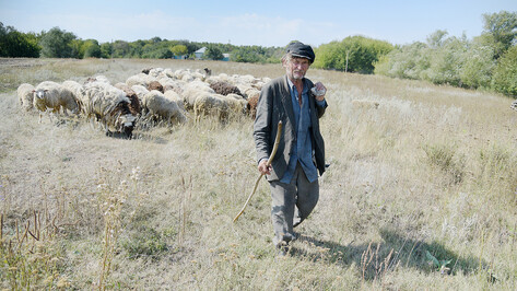 Заброшенные хутора: как пустеют воронежские деревни. Грушовое
