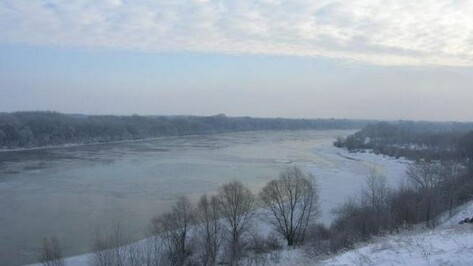 Следствие проверяет обстоятельства гибели двух рыбаков в Лискинском районе