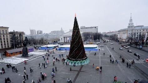 Прошлогоднюю главную елку Воронежа поставят во дворе Благовещенского собора